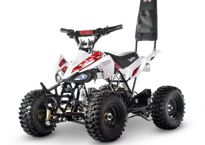 Electric ATV TR240 White with red TomRide Roll over bar